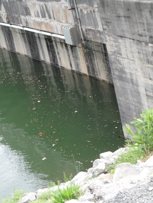 Close up of water against the dam